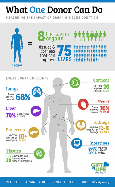 Infographic: What One Donor Can Do