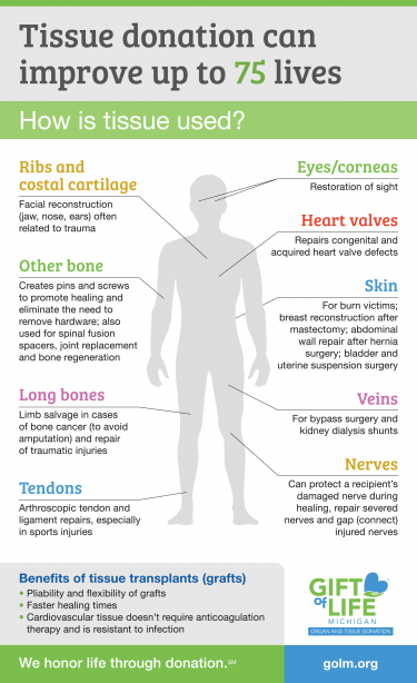Organ and Tissue Donation Infographic