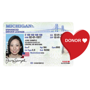 Michigan driver's license with red donor heart emphasized
